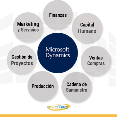 Dynamics NAV Madrid